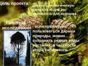 Цель проекта: доказать экологическую ценность кедра, его значимость для челов