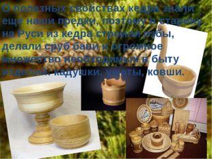 О полезных свойствах кедра знали еще наши предки, поэтому в старину на Руси и