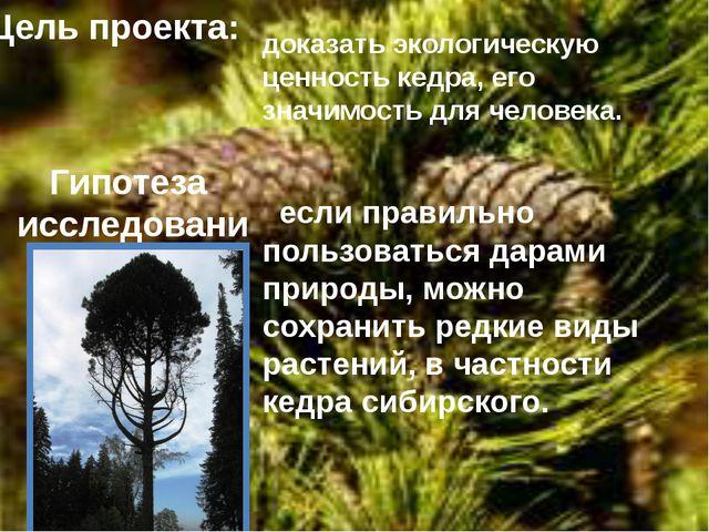 Цель проекта: доказать экологическую ценность кедра, его значимость для челов...