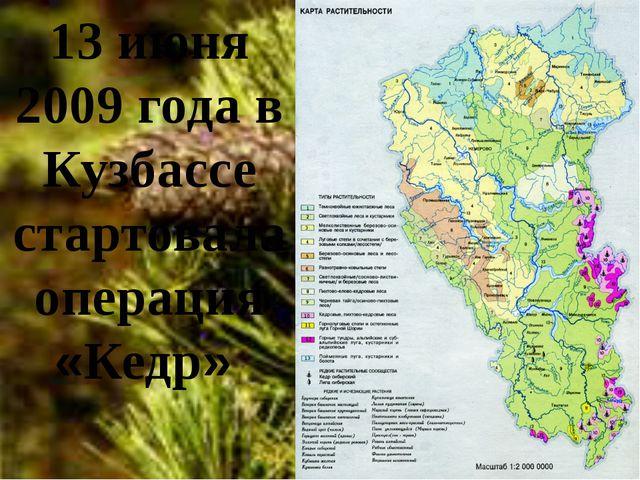 13 июня 2009 года в Кузбассе стартовала операция «Кедр»