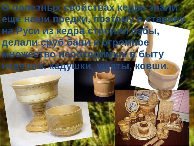 О полезных свойствах кедра знали еще наши предки, поэтому в старину на Руси и...