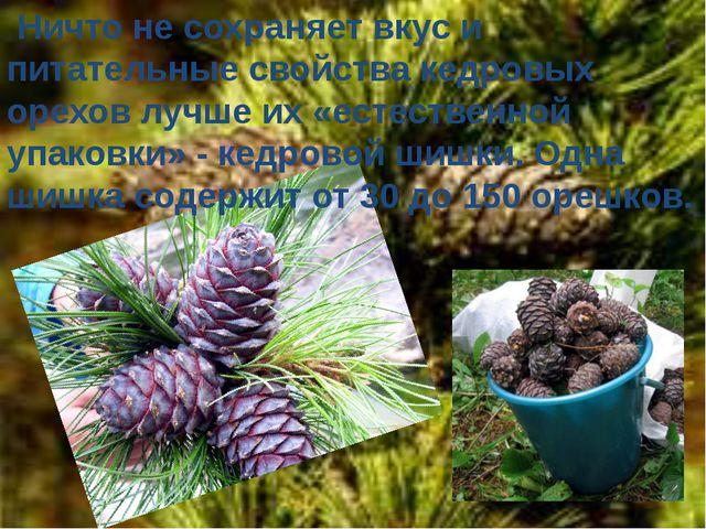 Ничто не сохраняет вкус и питательные свойства кедровых орехов лучше их «ест...