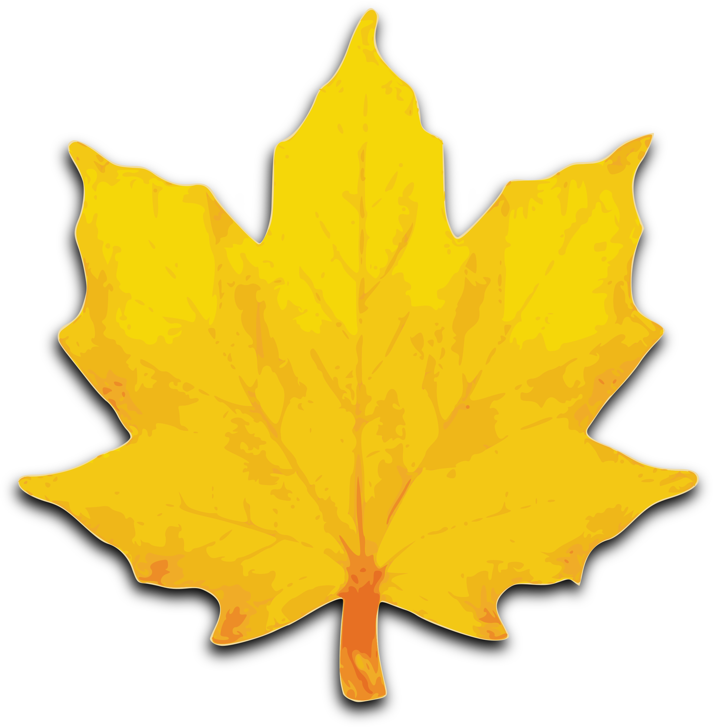 https://openclipart.org/image/2400px/svg_to_png/80635/M-Leaf-02.png