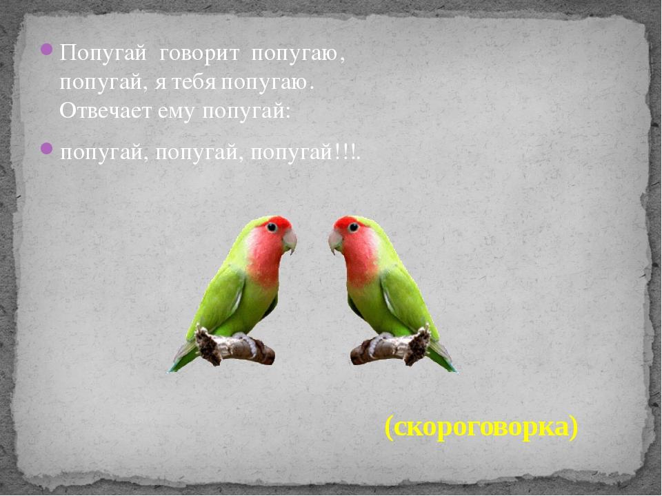 Попугай говорит попугаю, попугай, я тебя попугаю. Отвечает ему попугай: попу...
