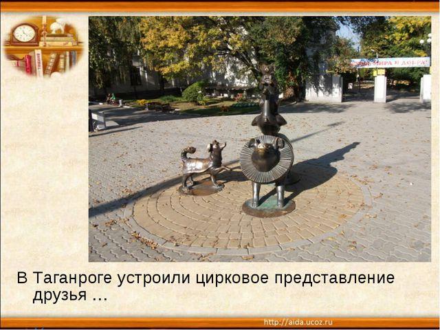 В Таганроге устроили цирковое представление друзья … Каштанки