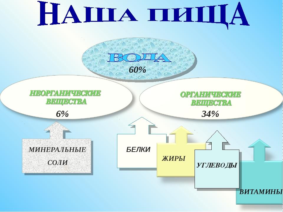 МИНЕРАЛЬНЫЕ СОЛИ БЕЛКИ ЖИРЫ ВИТАМИНЫ УГЛЕВОДЫ 60% 34% 6%