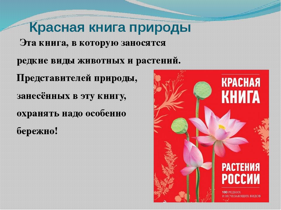 Красная книга природы Эта книга, в которую заносятся редкие виды животных и...