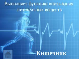 Обеспечивает движение организма Нервная система
