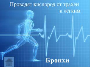 Подготовить сообщение: (по желанию) «Заболевания нервной системы», «Заболеван