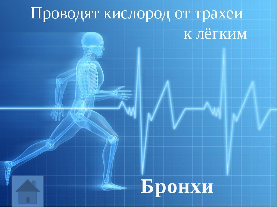 Подготовить сообщение: (по желанию) «Заболевания нервной системы», «Заболеван...