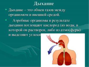 Дыхание Дыхание – это обмен газов между организмом и внешней средой. Аэробные