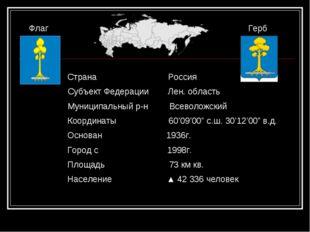 Флаг Герб Страна Россия Субъект Федерации Лен. область Муниципальный р-н Всев