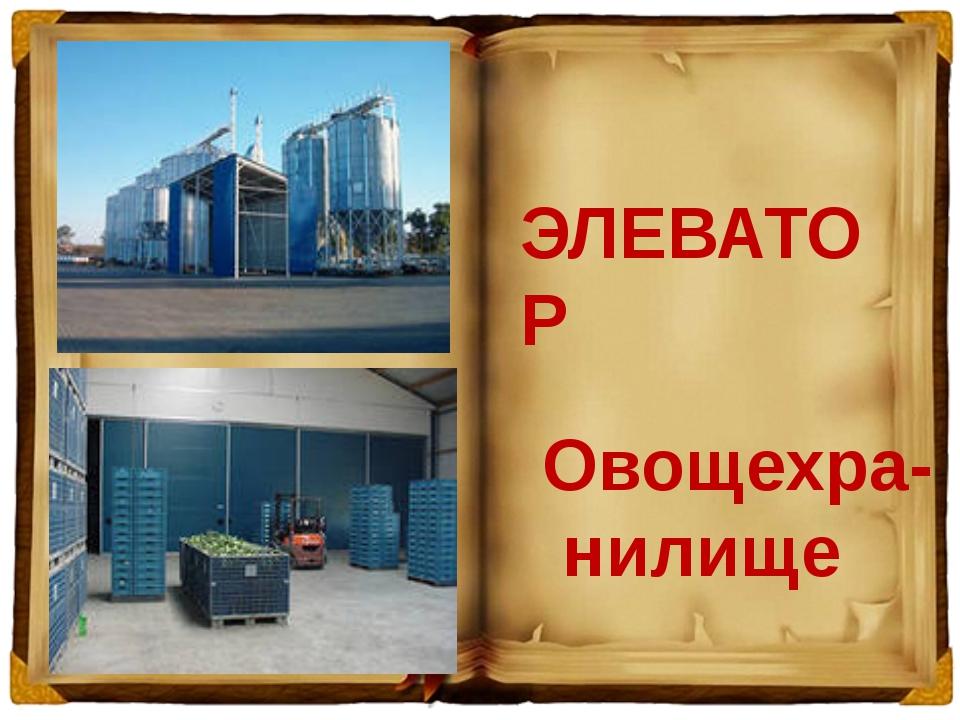 ЭЛЕВАТОР Овощехра- нилище