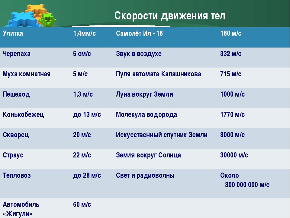 Скорости движения тел Улитка1,4мм/сСамолёт Ил - 18180 м/с Черепаха5 см/с...