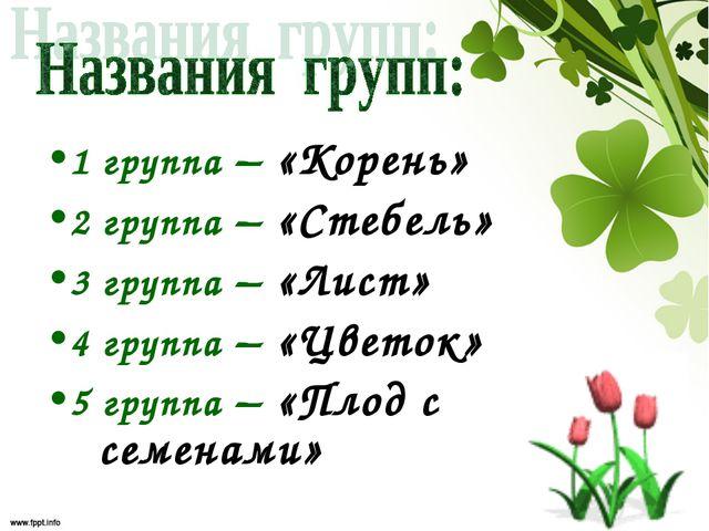 1 группа – «Корень» 2 группа – «Стебель» 3 группа – «Лист» 4 группа – «Цветок...