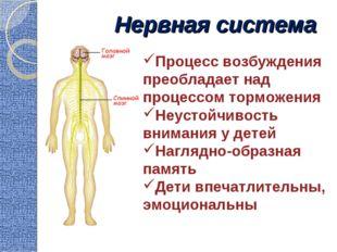 Нервная система Процесс возбуждения преобладает над процессом торможения Неус