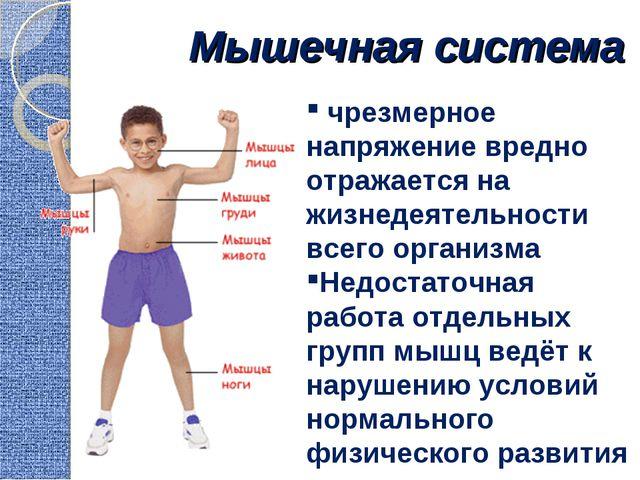 Мышечная система чрезмерное напряжение вредно отражается на жизнедеятельности...