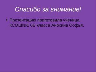 Спасибо за внимание! Презентацию приготовила ученица КСОШ№1 6Б класса Анохина