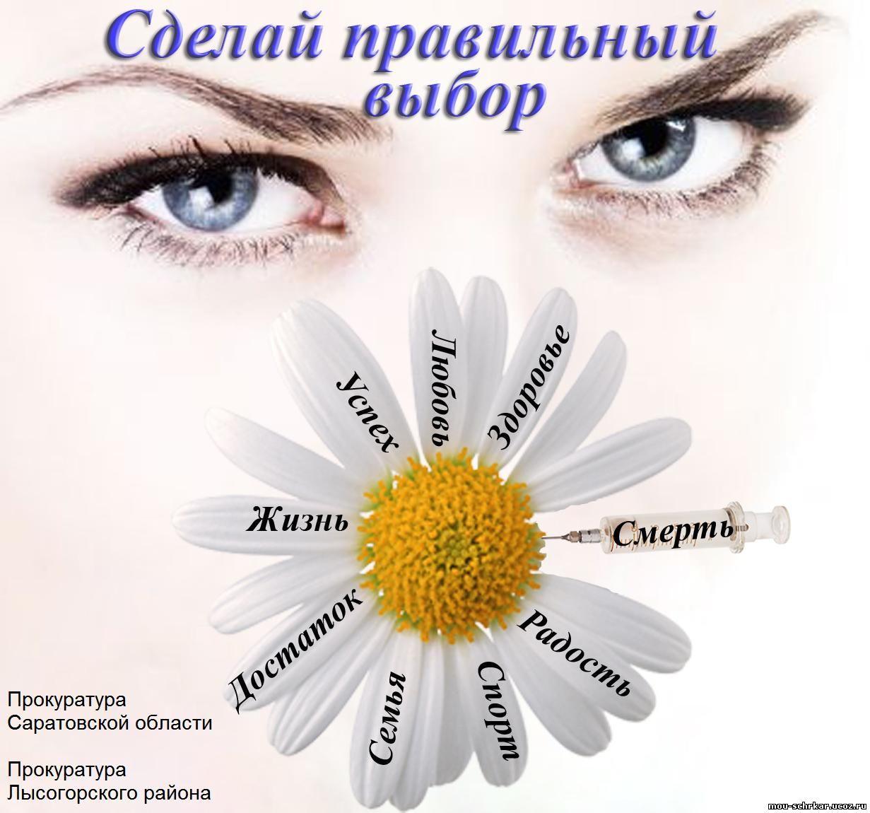 http://mou-schrkar.ucoz.ru/prokuratura_risunok_romashka.jpg