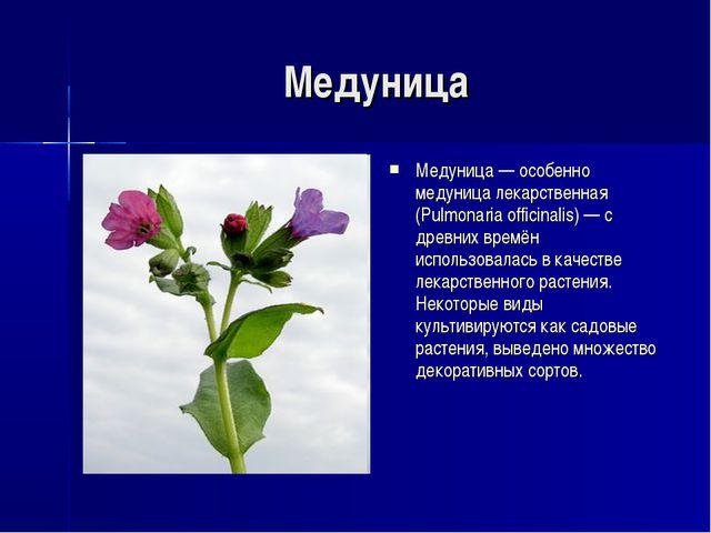 Медуница Медуница — особенно медуница лекарственная (Pulmonaria officinalis)...