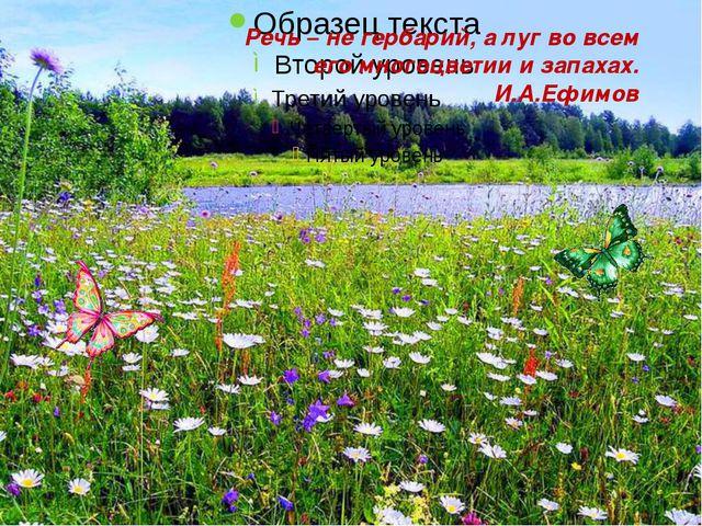 Речь – не гербарий, а луг во всем его многоцветии и запахах. И.А.Ефимов
