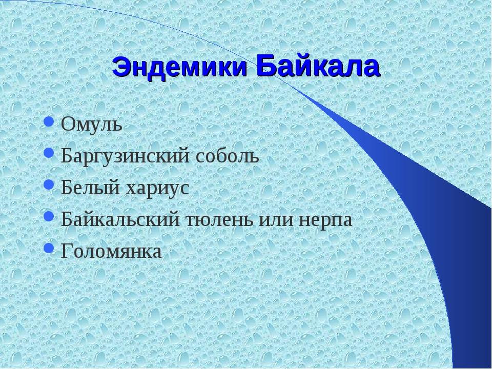 Эндемики Байкала Омуль Баргузинский соболь Белый хариус Байкальский тюлень ил...