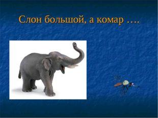Слон большой, а комар ….