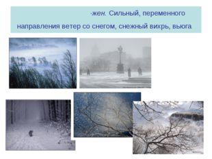 МЕТЕ́ЛЬ, метели, ·жен. Сильный, переменного направления ветер со снегом, снеж