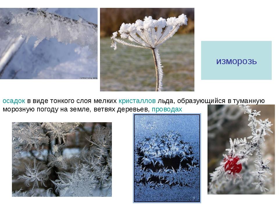 изморозь осадок в виде тонкого слоя мелких кристаллов льда, образующийся в ту...