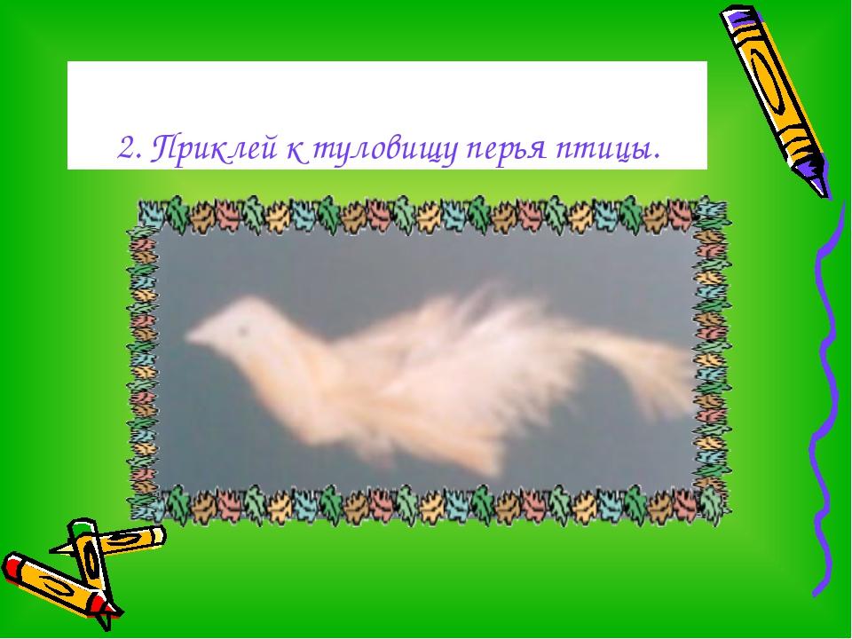 2. Приклей к туловищу перья птицы.