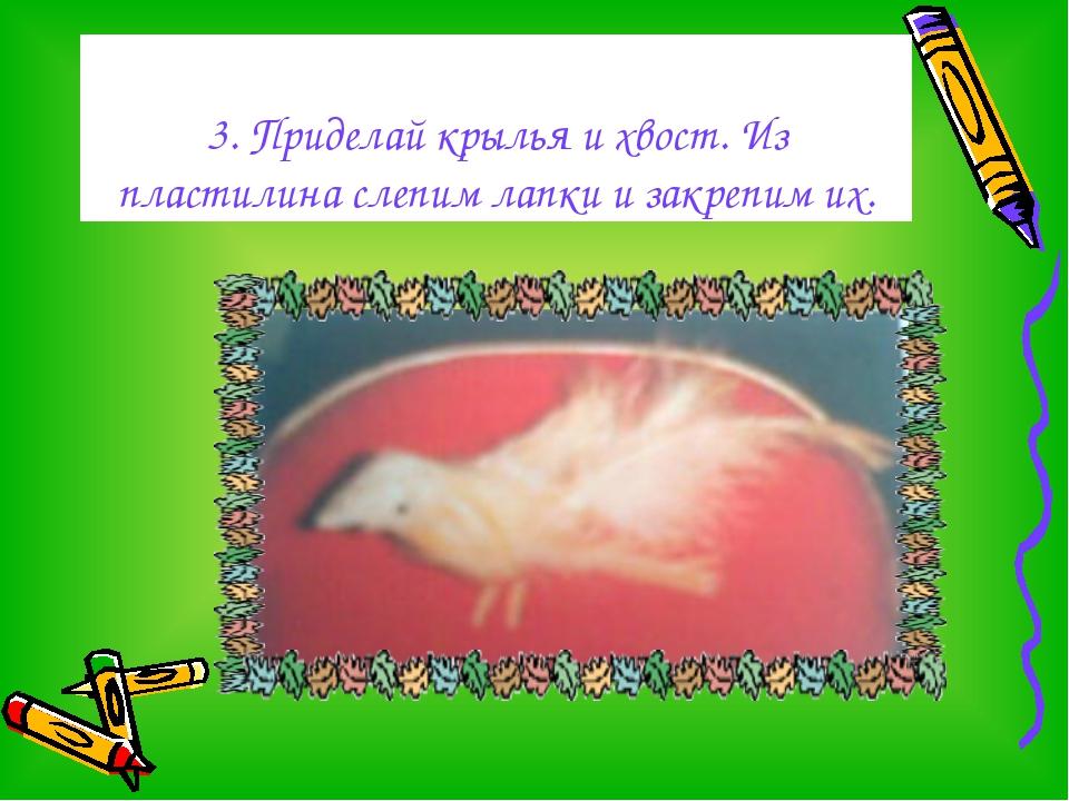 3. Приделай крылья и хвост. Из пластилина слепим лапки и закрепим их.