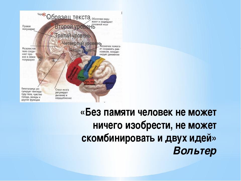 «Без памяти человек не может ничего изобрести, не может скомбинировать и двух...