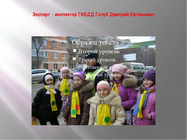 Эксперт - инспектор ГИБДД Голуб Дмитрий Евгеньевич
