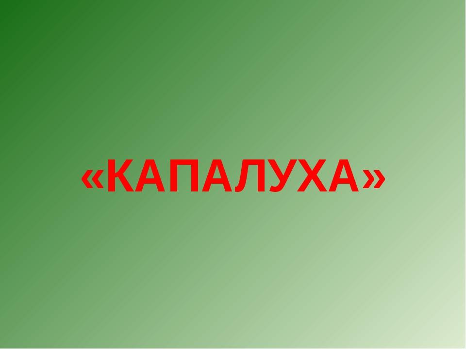 «КАПАЛУХА»
