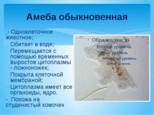 Амеба обыкновенная - Одноклеточное животное; Обитает в воде; Перемещается с п