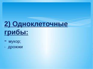 2) Одноклеточные грибы: - мукор; - дрожжи