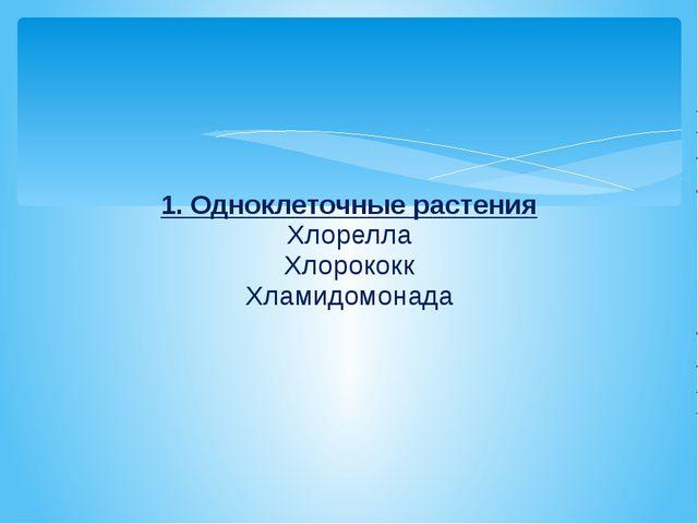 1. Одноклеточные растения Хлорелла Хлорококк Хламидомонада