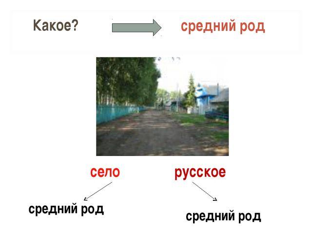 Какое? средний род село средний род средний род русское
