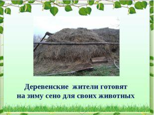 Деревенские жители готовят на зиму сено для своих животных
