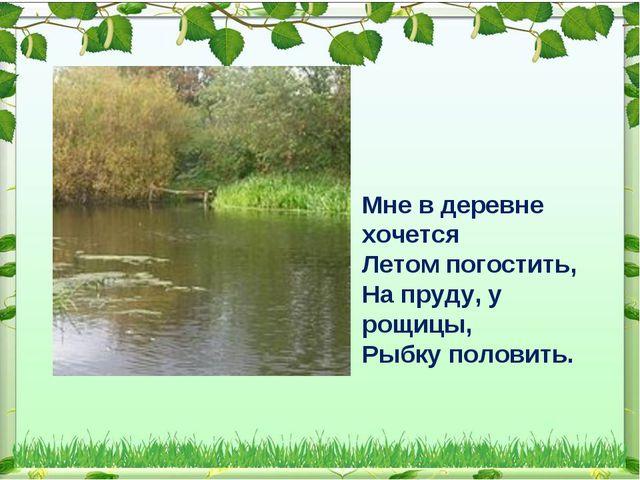 Мне в деревне хочется Летом погостить, На пруду, у рощицы, Рыбку половить.