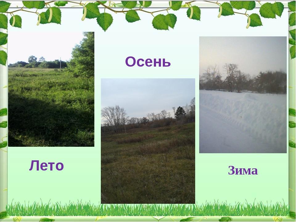 Лето Осень Зима