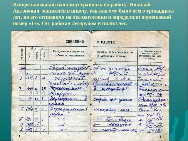 Вскоре калмыков начали устраивать на работу. Николай Антонович записался в шк...