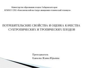 Министерство образования и науки Хабаровского края КГБПОУ СПО «Комсомольский