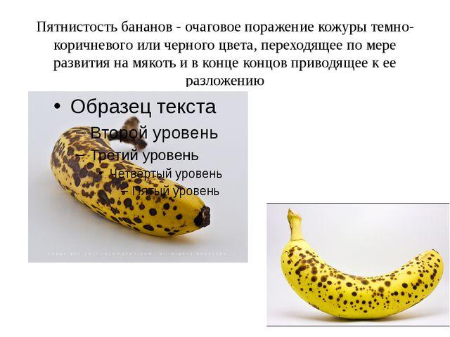 Пятнистость бананов - очаговое поражение кожуры темно-коричневого или черного...