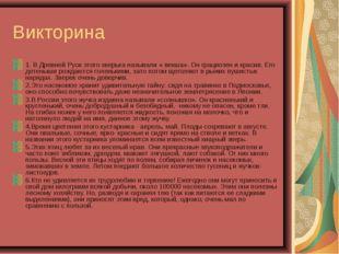 Викторина 1. В Древней Руси этого зверька называли « векша». Он грациозен и к