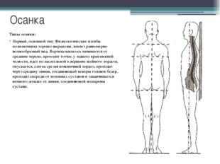 Осанка Типы осанки: Третий тип осанки - круглая спина. Её основная характерис