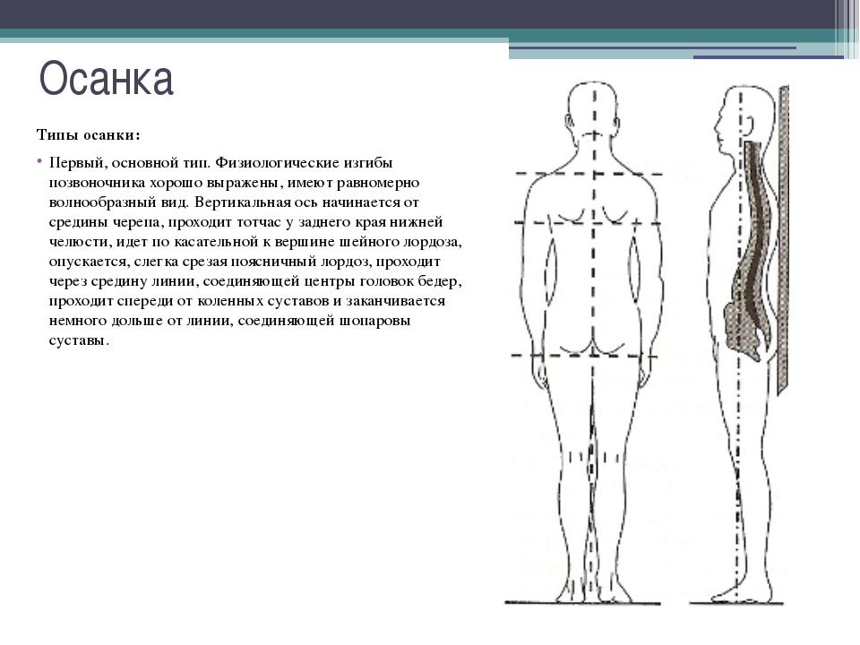 Осанка Типы осанки: Третий тип осанки - круглая спина. Её основная характерис...