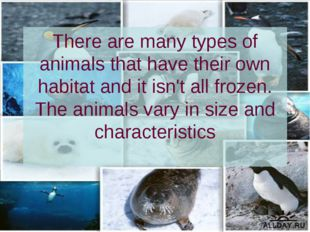 There are many types of animals that have their own habitat and it isn't all