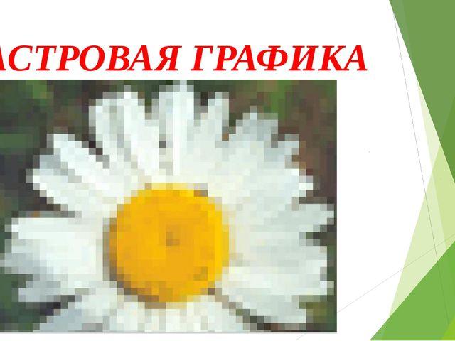 РАСТРОВАЯ ГРАФИКА