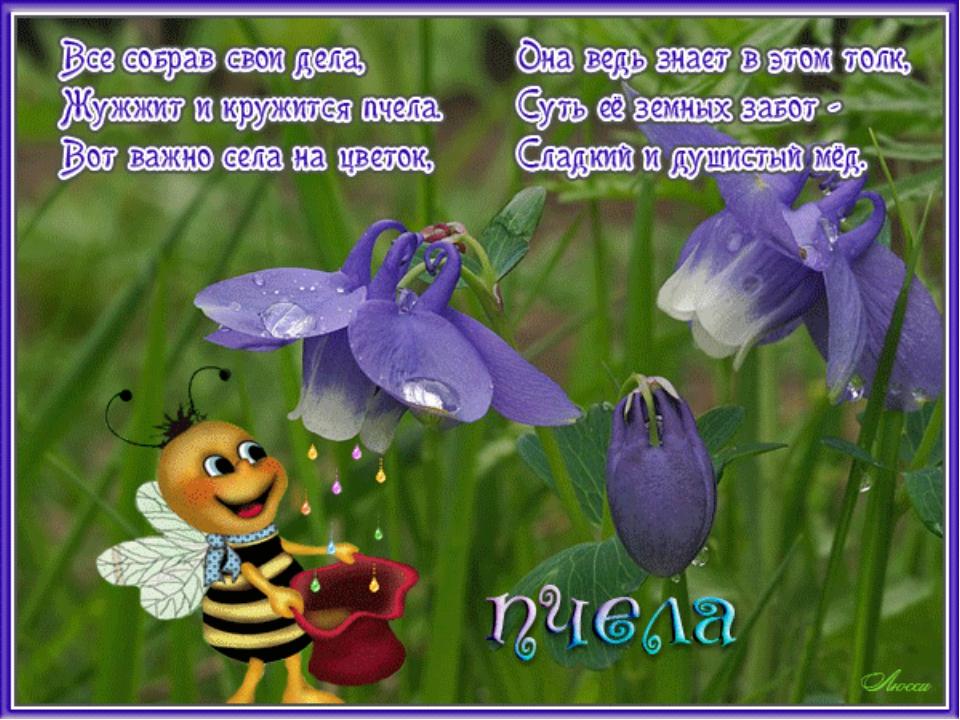 Поздравление с днем рождения женщине про пчелку